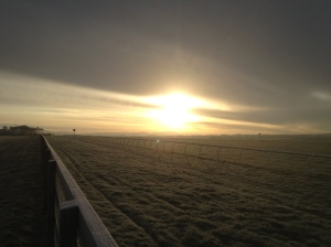 Travelling from Dublin to Cork I set off earlier so I can stop for a walk en route, and see sunrise over a frosty Curragh
