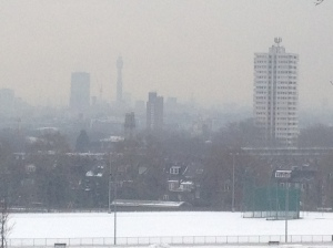 I'm determined not to let the weather stop my plans for a walk across Hampstead Heath, and am rewarded with a fine winter view of London