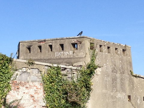 A solitary bird stands guard at an abandoned fortress in Dublin's Phoenix Park.
