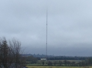You can click on any picture for the high-res version. This is the tower as seen in the landscape of Co. Meath. It is actually a better shot than the close-up ones, as there are so many obstructions of the view from the roadway closest to the site.