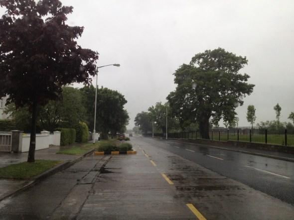 rainynoggin